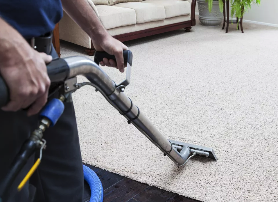How To Clean Carpet Like A Pro 6